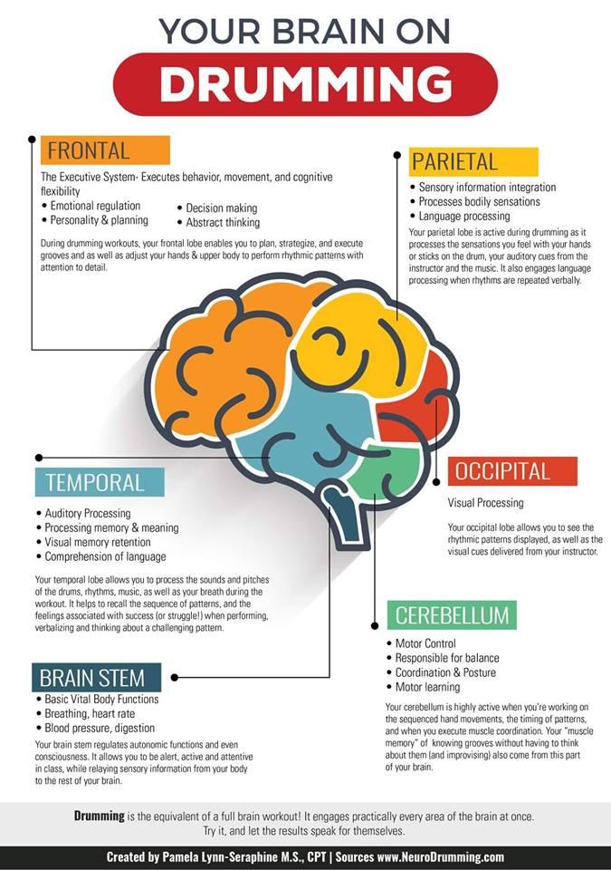 braindrum